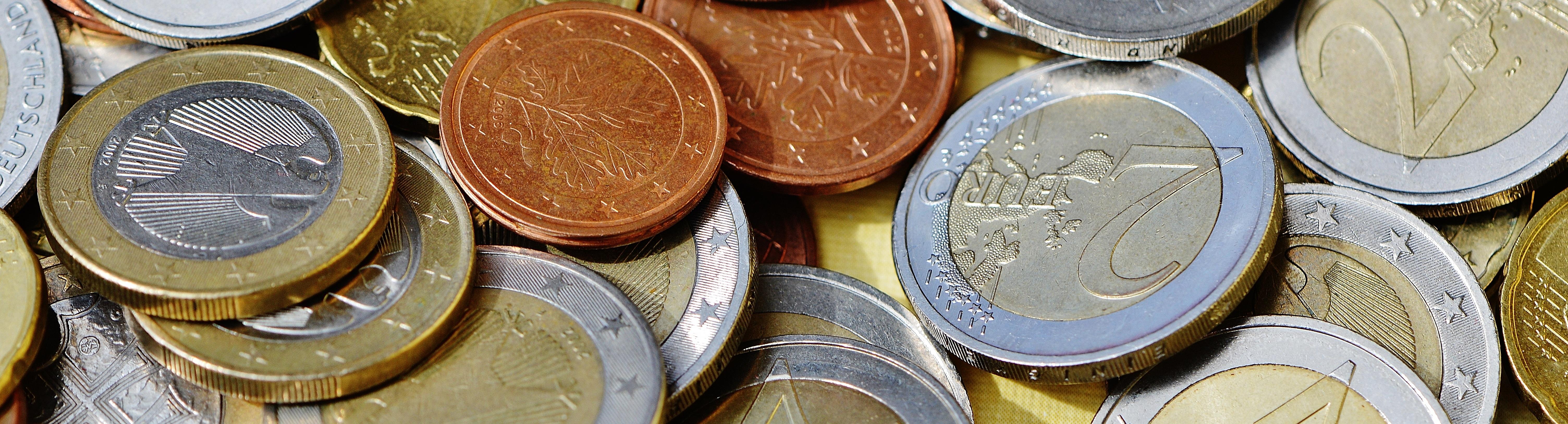 money euro eurozone budget european parliament lubor lacina bernd lucke debate