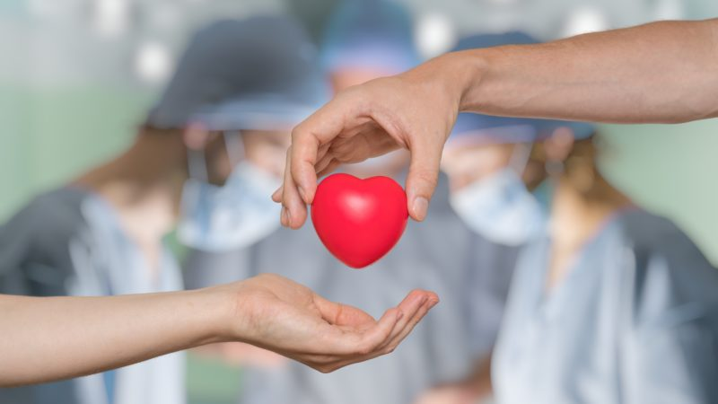 transplant organ donation donors death medecine