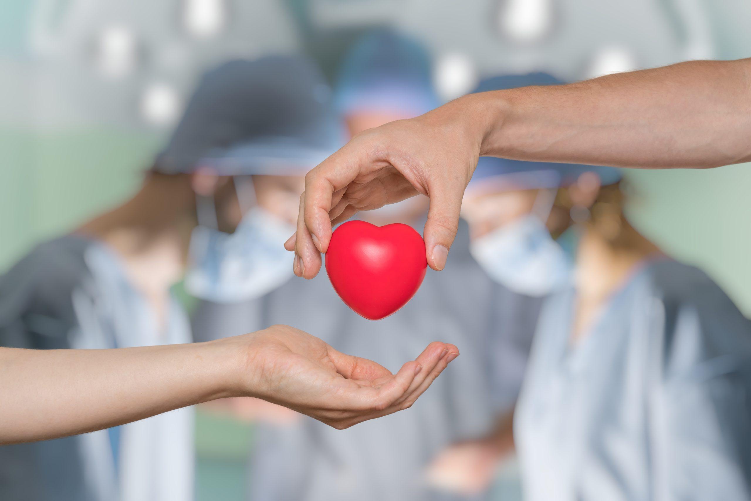 Should conscription of organs after death be mandatory?