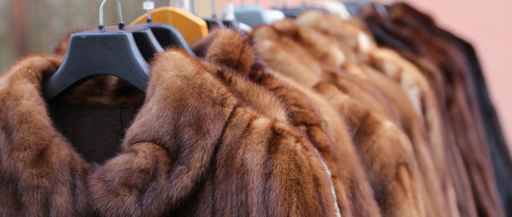 For or against animal fur?