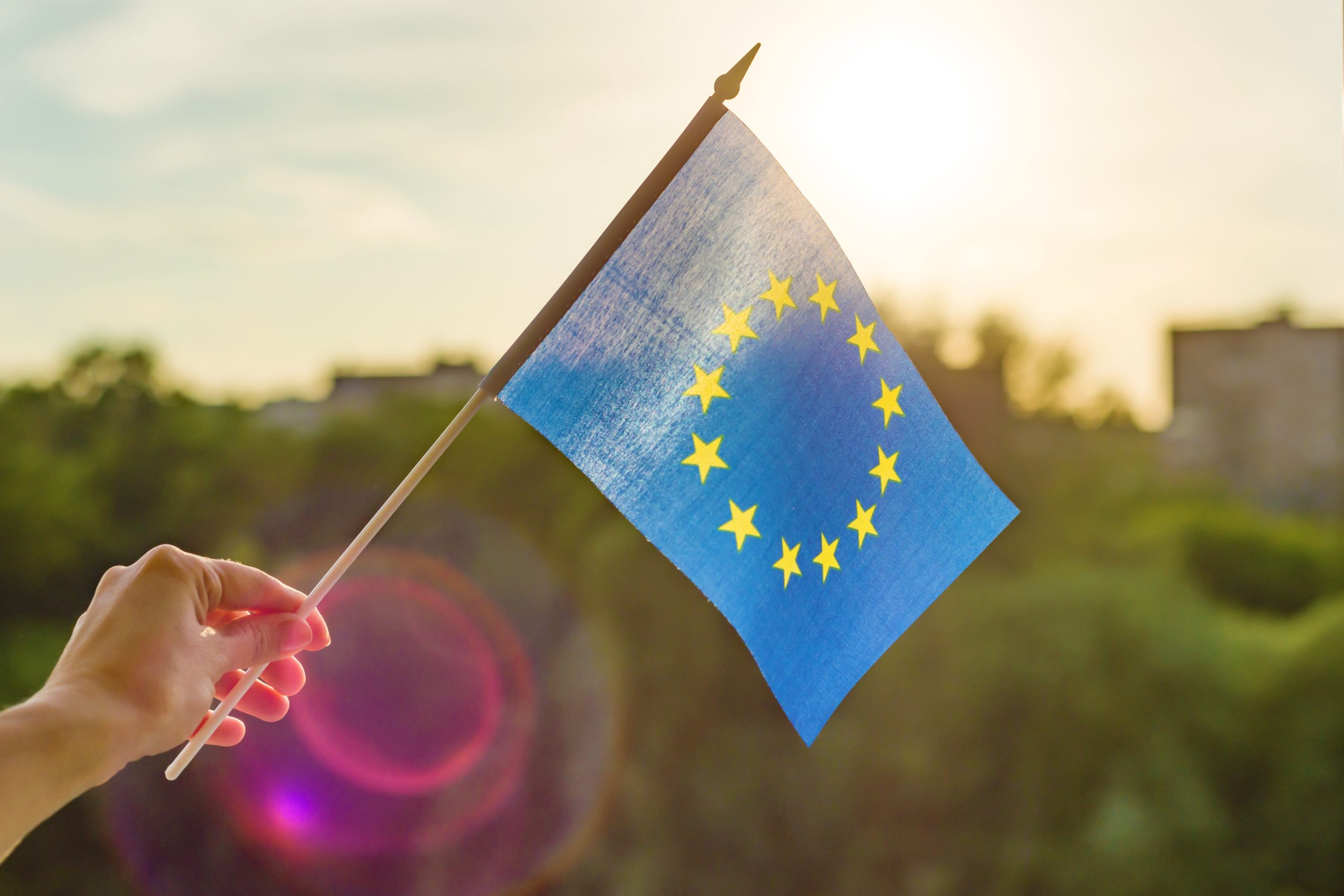 Should the EU become the 'United States of Europe'?